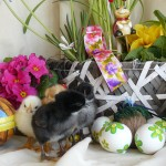 Frohe Ostern2